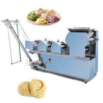 After-Sale Service French Fries 2D/3D Snack Pellet Making Machine