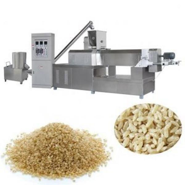 Chips Production Line / French Fries Making Machine / Frozen Fries