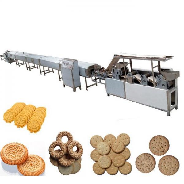 Hot Sale Continuous Tunnel Laver Drying Microwave Dryer